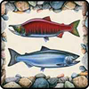 FISHSOXX FISH COASTERS SET OF 4: SOCKEYE/CHINOOK
