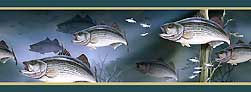 WALLPAPER BORDER: STRIPED BASS, GREEN