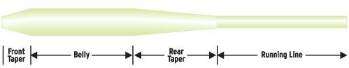 Mastery Series Steelhead Taper