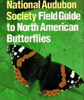 NATIONAL AUDUBON SOCIETY FIELD GUIDE TO BUTTERFLIES