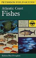 PETERSON FIELD GUIDE: ATLANTIC COAST FISHES