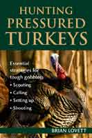 HUNTING PRESSURED TURKEYS