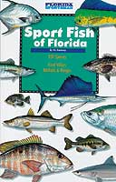 SPORT FISH OF FLORIDA: FRESH AND SALT WATER