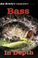 BASS IN DEPTH