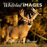 WHITETAIL IMAGES: UP CLOSE & PERSONAL