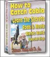 BENNETT MARINE: HOW TO CATCH COBIA DVD