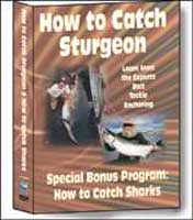 BENNETT MARINE: HOW TO CATCH SHARKS & HOW TO CATCH STURGEON DVD