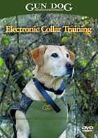 ELECTRONIC COLLAR TRAINING