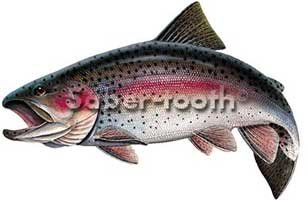 VINYL FRESHWATER FISH STICKERS: RAINBOW TROUT (LARGE  L)