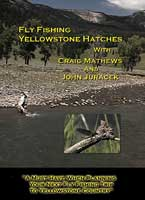FLY FISHING YELLOWSTONE HATCHES - DVD
