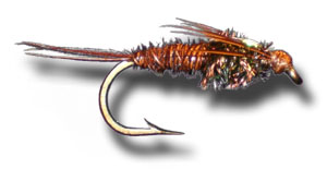 Flash Back Pheasant Tail