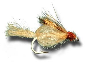 Sparkle Caddis Pupa - Dark