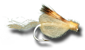 Sparkle Caddis Pupa - Light