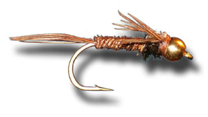 Bead Head Flash Back Pheasant Tail