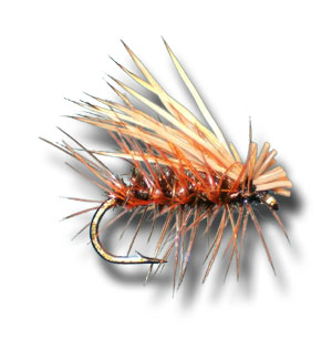 Elk Hair Caddis - Peacock
