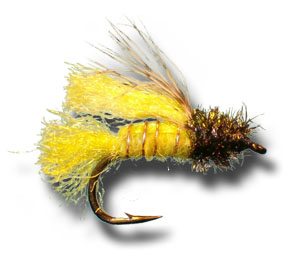 Z-Wing Caddis Emerger - Amber