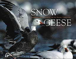 SNOW GOOSE: GRANDEUR AND CALAMITY ON AN ARCTIC LANDSCAPE