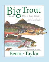 BIG TROUT: HOW & WHERE TO TARGET TROPHIES
