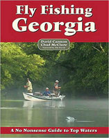 NO NONSENSE GUIDE TO FLY FISHING GEORGIA