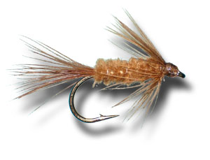 Carey Special Wet Fly - Brown
