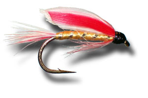 Parmachene Belle Wet Fly