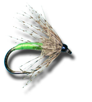 Newsletter Special: Partridge & Green Wet Fly