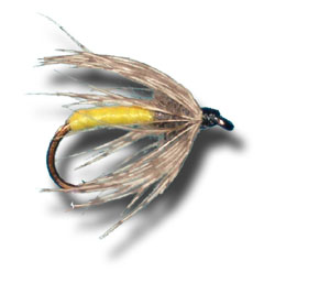 Partridge & Yellow Wet Fly