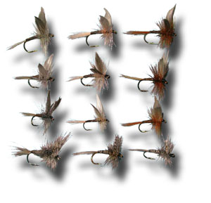 Quill Assortment - 12 Flies
