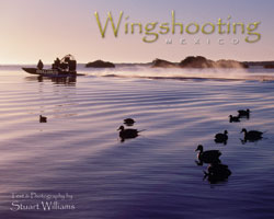 WINGSHOOTING MEXICO