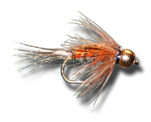 BH Tellico Nymph - Orange