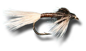 Black Quill Nymph