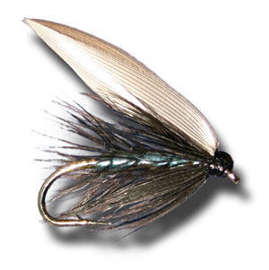 Blue Bottle Wet Fly