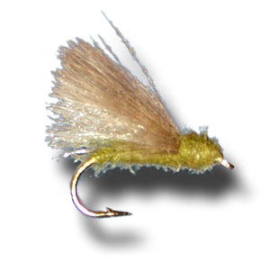 CDC Adult Caddis - Olive