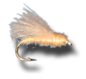 CDC Adult Caddis - Tan