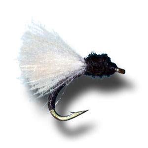 CDC Emerger - Trico