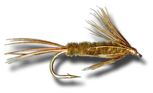 Carey Special Wet Fly - Olive