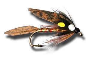 Fish Hawk Wet Fly
