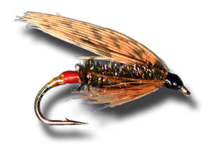 Governer Wet Fly