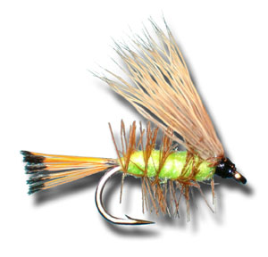 Palmered Caddis - Green