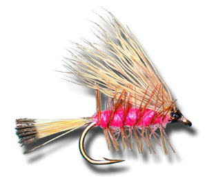 Palmered Caddis - Pink