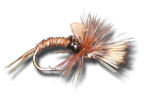 Pheasant Tail Challenged