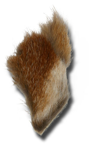 Red Fox Fur Patch