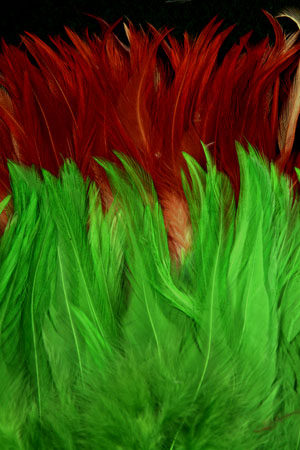 Saddle Hackle