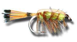 Tied Down Caddis - Green