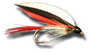 Trout Fin Wet Fly