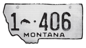Simms License Plate Decal