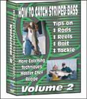 BENNETT MARINE: HOW TO CATCH STRIPED BASS VOL. 2 DVD