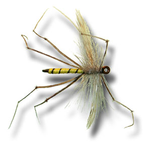 Daddy Long Legs Cranefly - Yellow