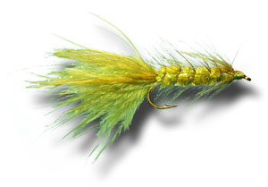 Woolly Bugger - Olive