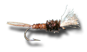 Emerger Pheasant Tail